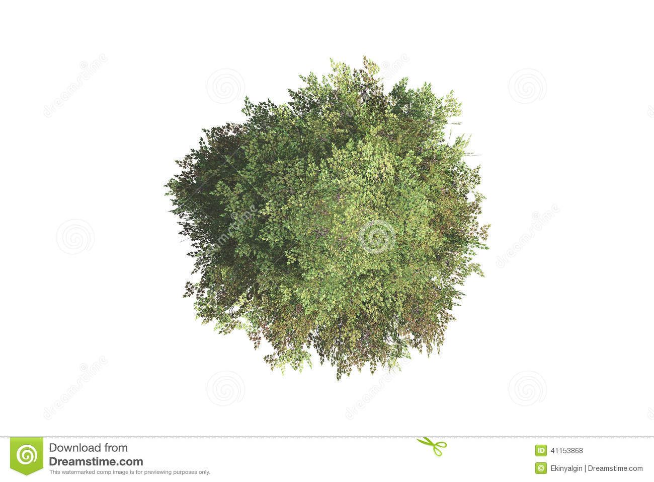 Top view plants 02 2d plant entourage for architecture - Top View Tree Green Natural Your Landscape Designs