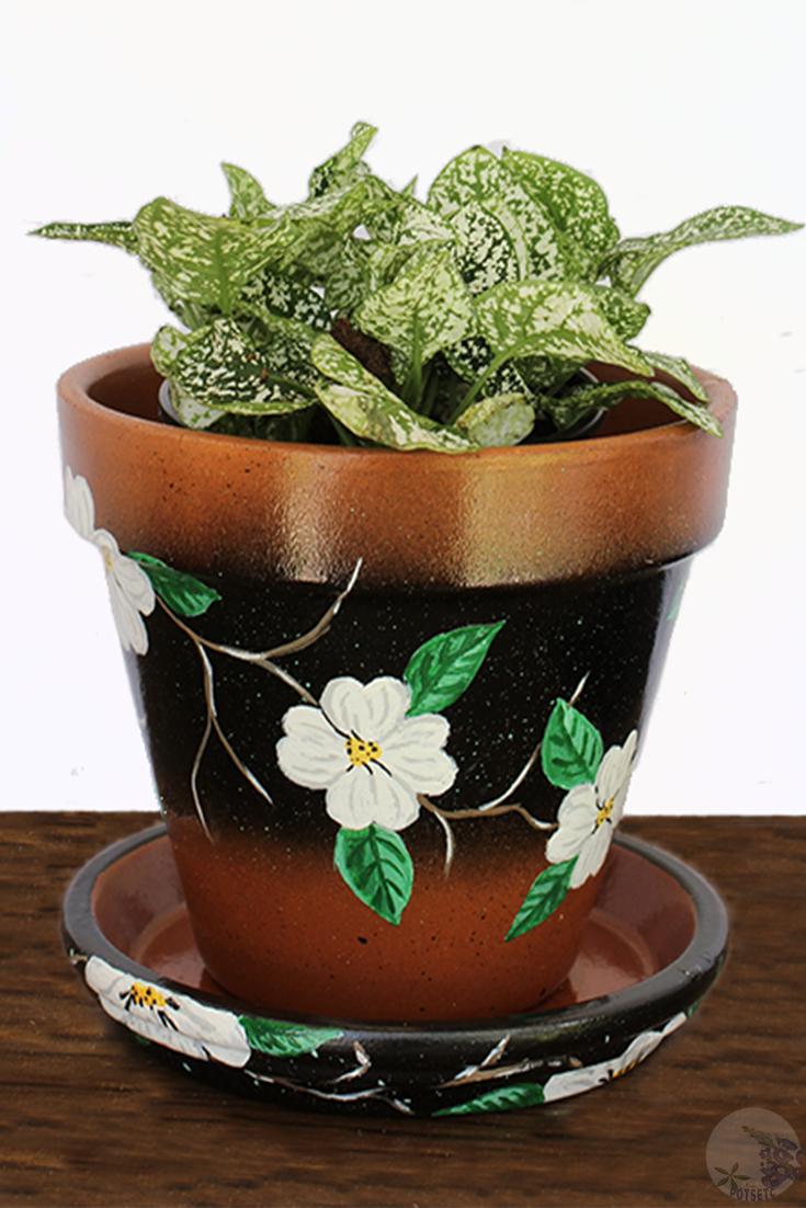 Hand Painted Terra Cotta Clay Pot White Flowers Decorative Etsy Painted Flower Pots Painted Plant Pots Plant Pot Decoration