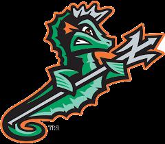 Norfolk Tides Logo Sports Logo Design Logo Character Animal Logo