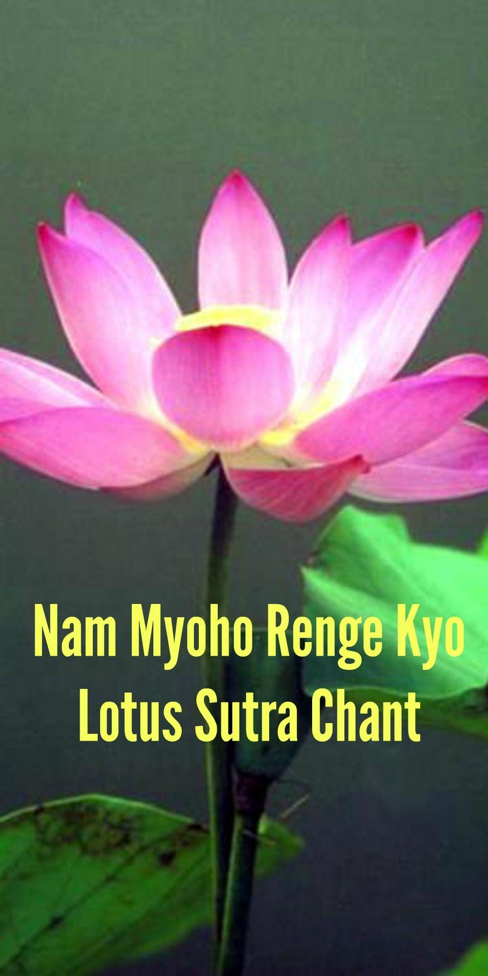 Nam Myoho Renge Kyo Lotus Sutra Chant Lyrics, Meaning