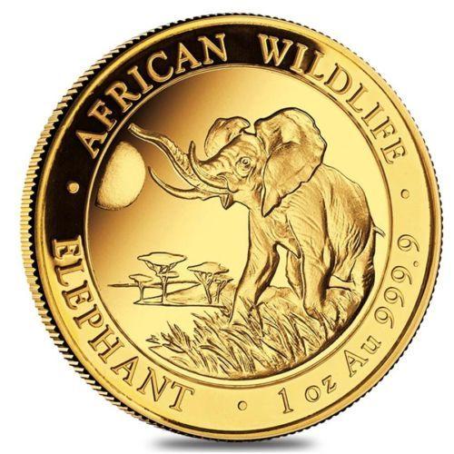 2016 Somalian 1 Oz Gold African Elephant Bu In Capsule Gold Elephant African Elephant Gold Bullion Coins