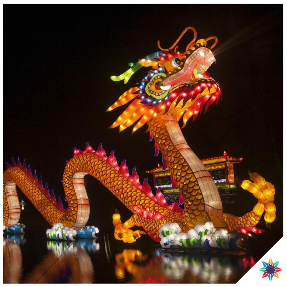 O Dragao Chines E Uma Das Marcas Registradas Da China A Lenda Diz Que Pan Ku O Deus Criador Convocou O Dragao E Mais Quatro Animais Sagrados Para Part Animals