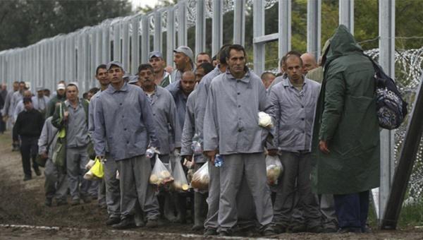 #Mundo | Hungría envía a prisioneros a construir valla contra #refugiados | http://tlsur.net/1iksemT