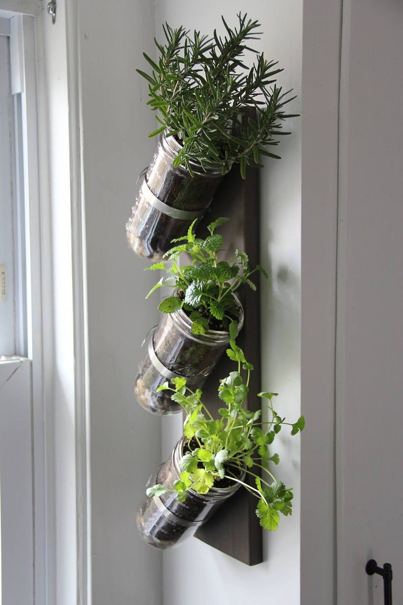 indoor herb garden mason jar herb garden mason jar on indoor herb garden diy wall mason jars id=25646