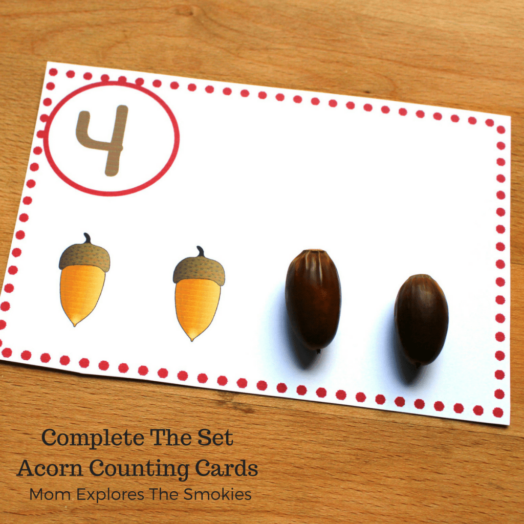 Complete The Set Acorn Counting Cards