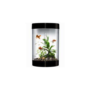 Biorb 9 Gallon Biube Aquarium Aquariums Petsmart With Images Cool Fish Tanks Fish Tank For Sale Aquarium