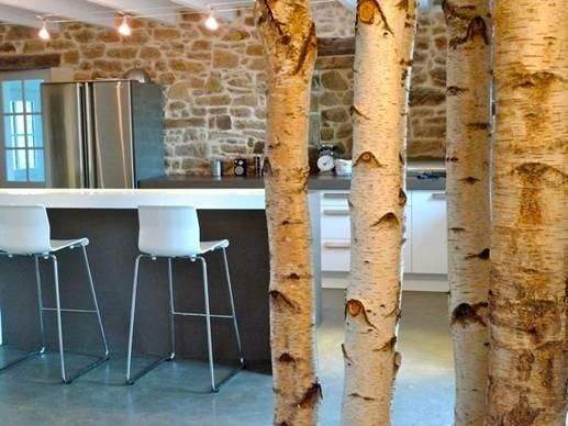 Decor design en bouleau blanc  DECO BOULEAU  Pinterest