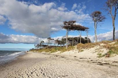 Strand ostsee ddr fkk FKK vor
