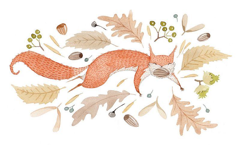 Happy squirrel by Julianna Swaney