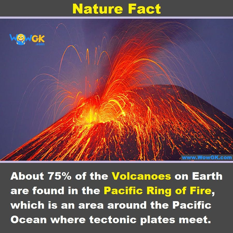 In Which Region Of The Earth Maximum Number Of Volcanoes Are Found Nature Fact Volcanoes Pacificringoffire Wowgk Plate Tectonics Volcano Earth