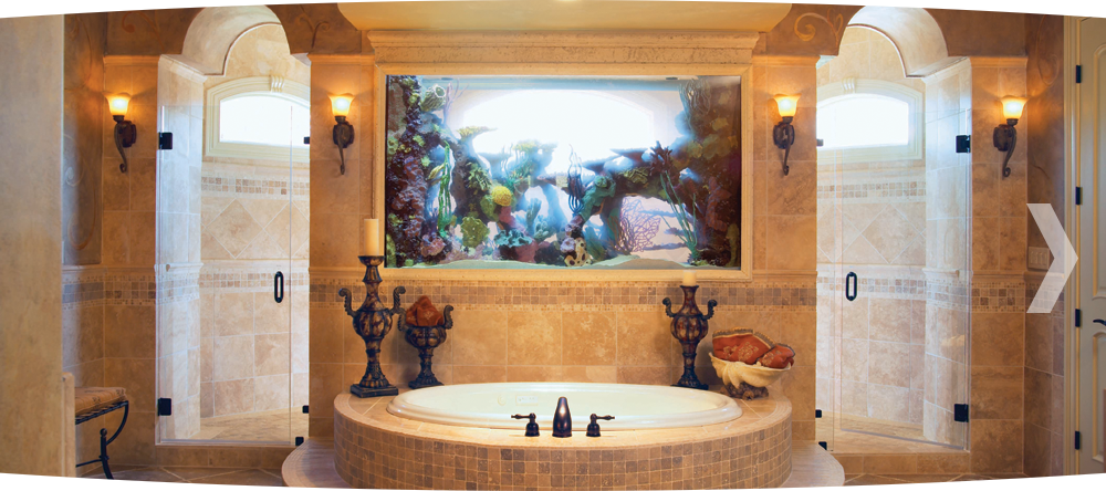Every Roman Shower Should Have A Fish Tank Divider With Images