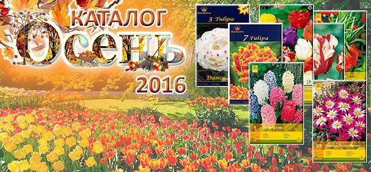 польские семена почтой интернет магазин