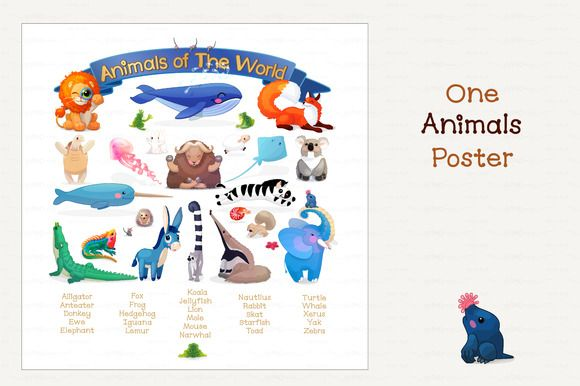 Vector Animals Of The World Animals Of The World Animals
