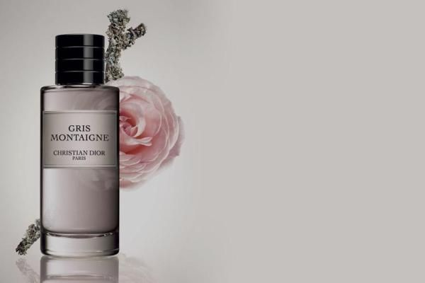 Christian Dior Gris Montaigne Perfume Review With Images