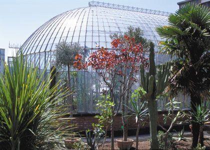 Le jardin des plantes à Nantes, un havre de paix au coeur de la ...
