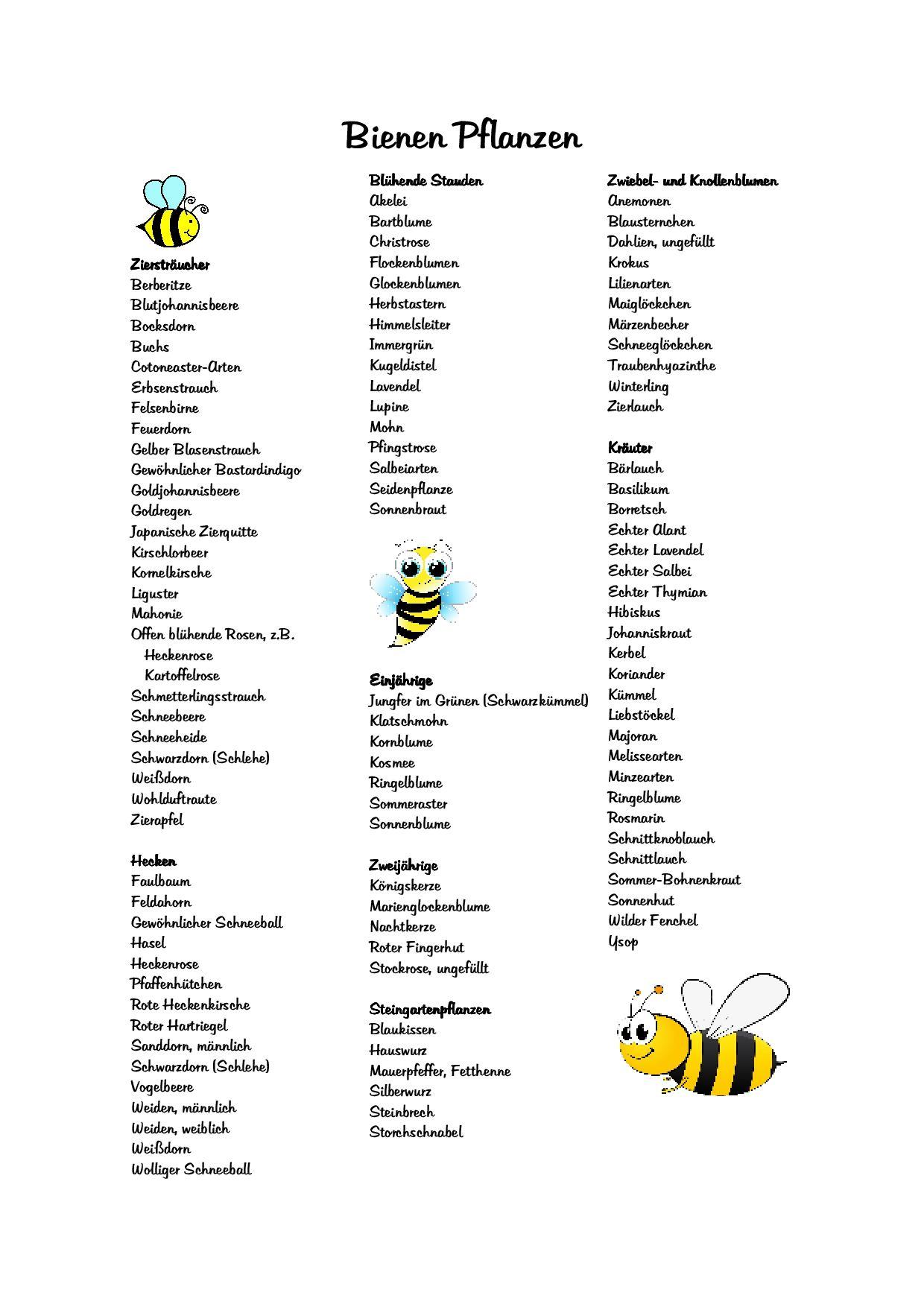 Bienen Pflanzen Bienenweide Plants For Bees Bee Meadow Save The