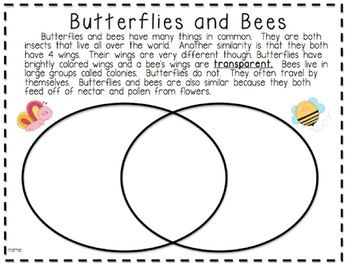 Compare and Contrast PassagesAnimals Insects Adventures