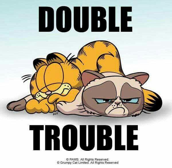 Pin By Carris Watson On Tardar Sauce Grumpy Cat Grumpy Cat Meme Garfield And Odie