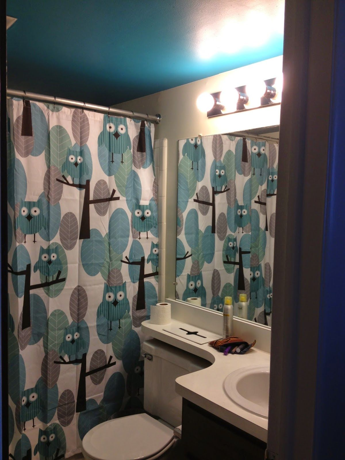 Lowes Bathroom Paint Bathroom With Owl Shower Curtain Via Meijer Paint Hang Ten By