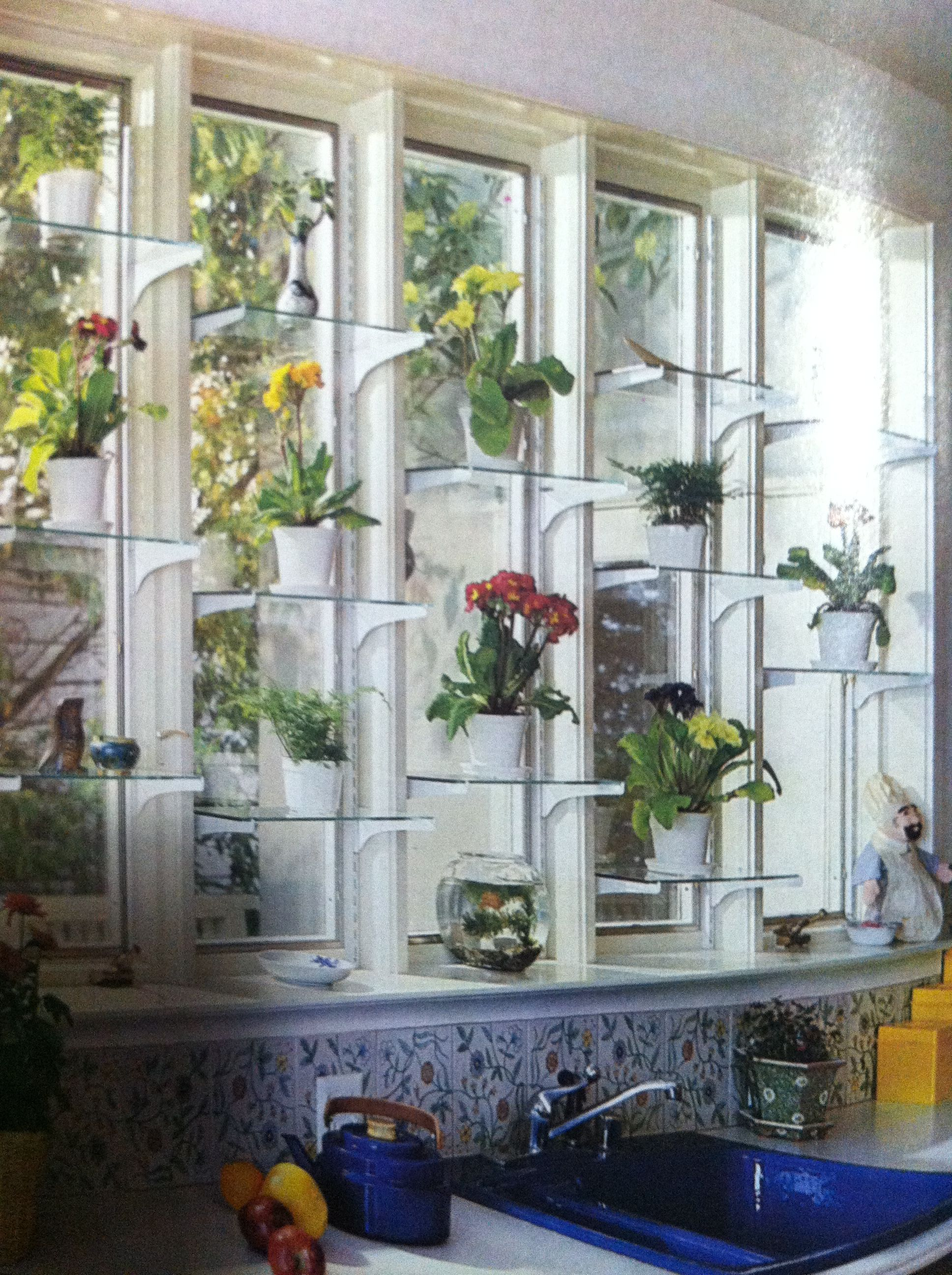 Glass window shelves for plants indoor window plants - How to hang plants in front of windows ...