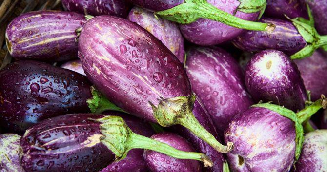 Egg Plants Eggplant Relish Eggplant Fresh Oregano
