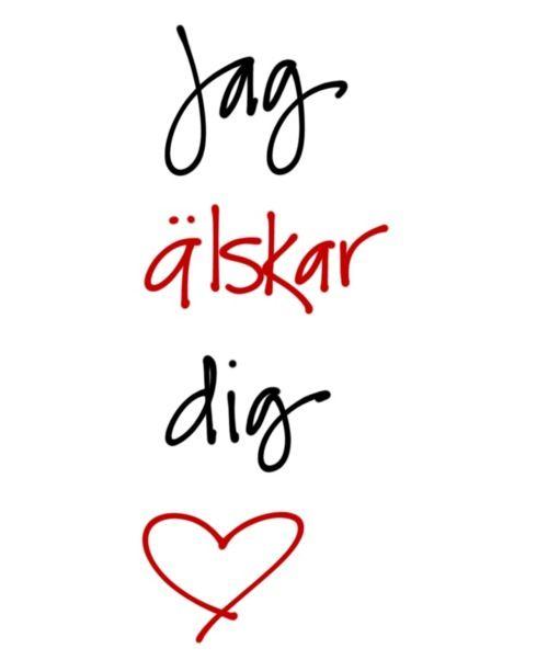 My favorite sentence 'I love you'   Learn Swedish ...