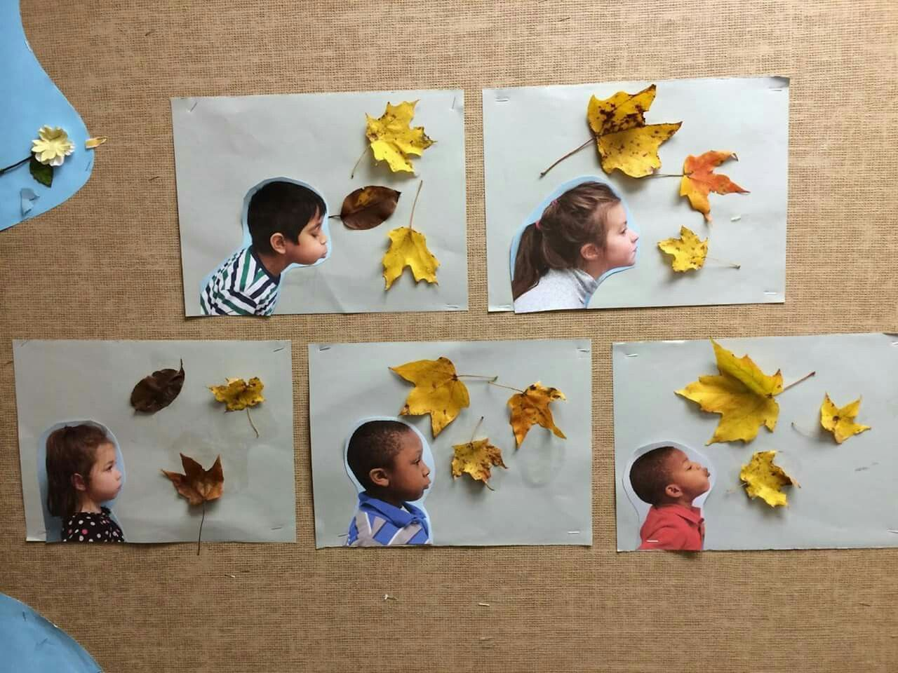 best 25 fall art preschool ideas on pinterest thanksgiving