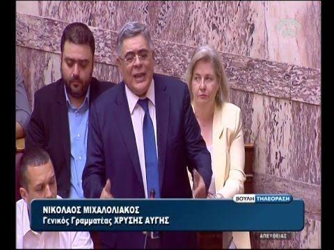 Ν. Γ. Μιχαλολιάκος: Μόνο με την Χρυσή Αυγή η Ελλάδα θα είναι μια ασφαλής...