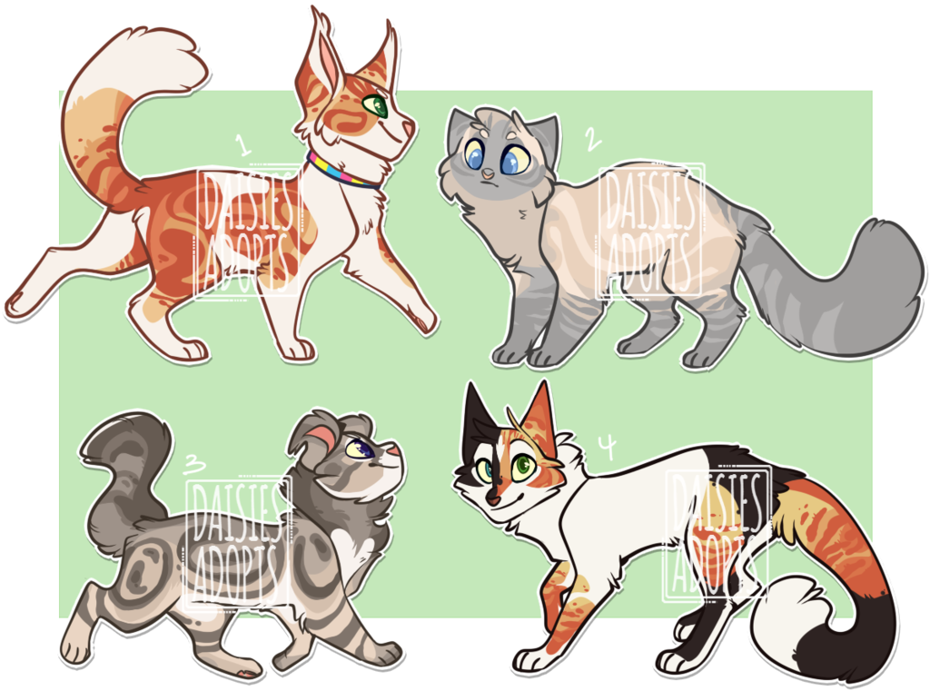 Cat adoptables Auction CLOSED by https//daisiesadopts