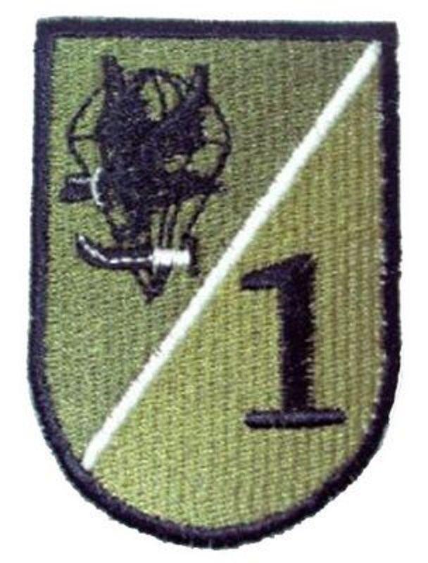 Batallón de paracaidistas. 1ª compañía