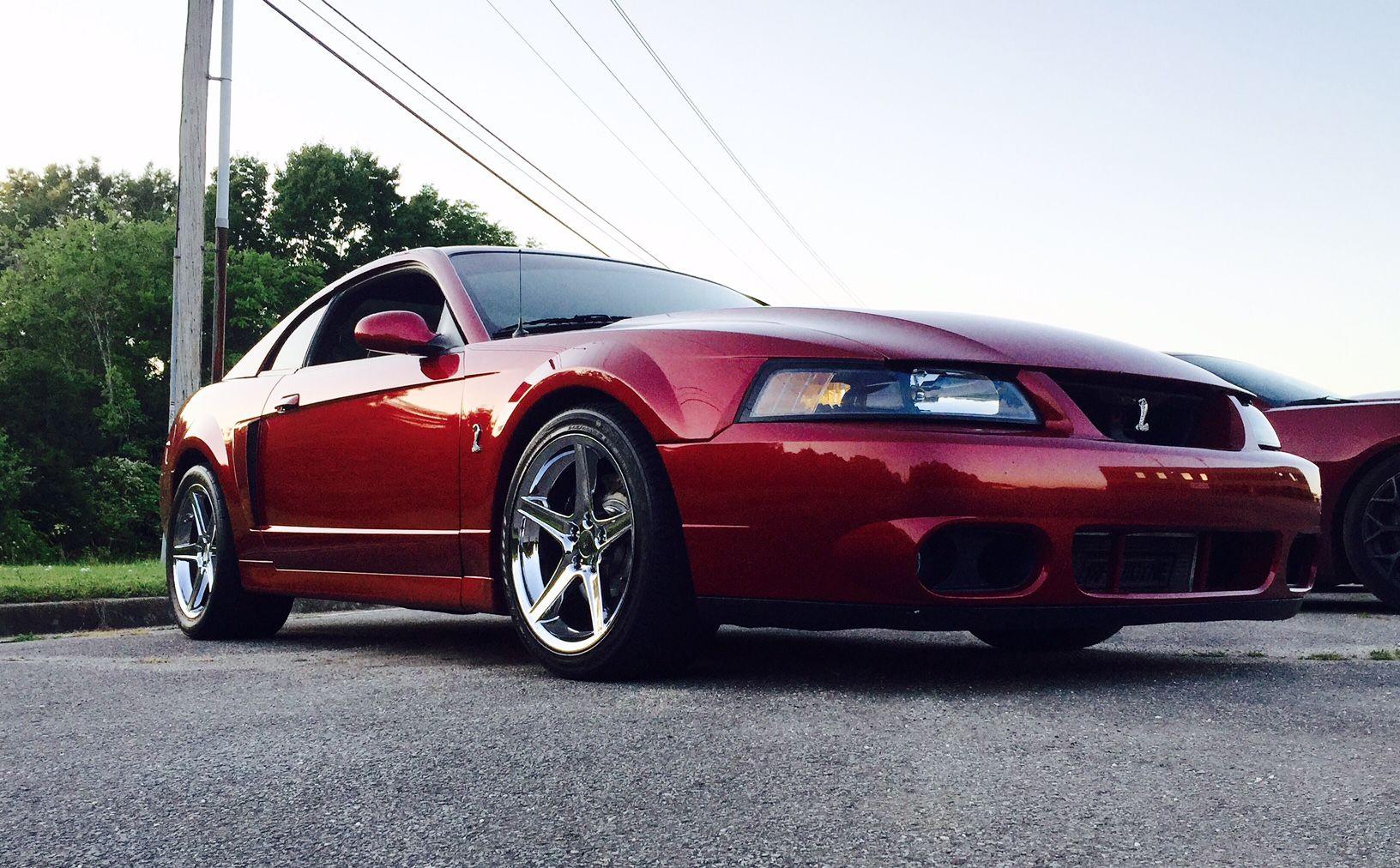 The Terminator Mustang
