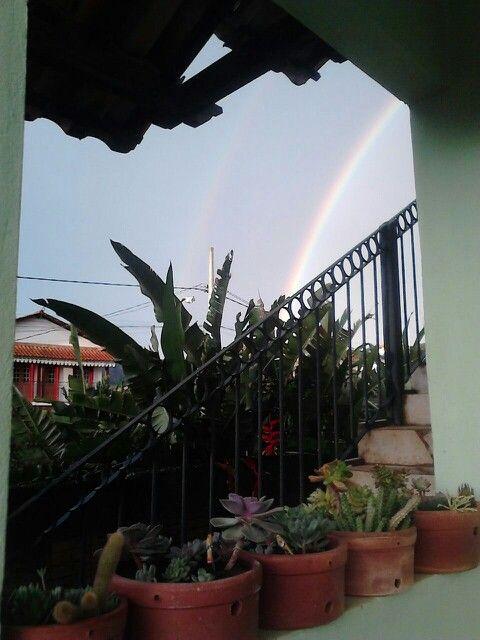 E depois da chuva um lindo presente...
