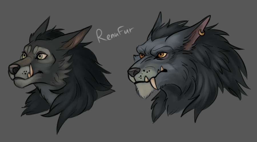 Worgen faces by RenuFur on DeviantArt