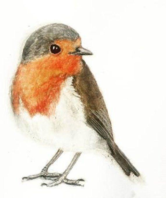 Robin Art - A red breasted robin print. Originally a bird watercolor. A small bird print. Ideal as Robin gift, for wild bird lover #smallbirds
