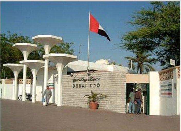 Dubai Zoo Jumeirah Dubai Uae Attraction Places Outdoor Structures Dubai Attraction