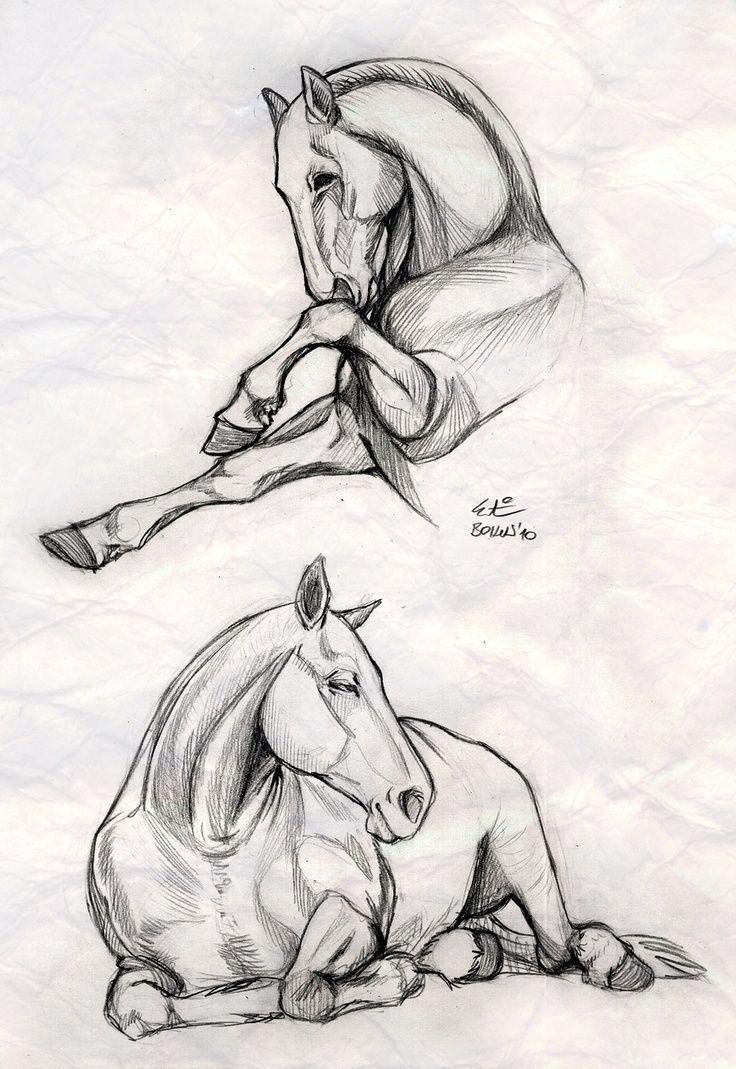 Zeichnungen Caballos Schone Farben Schnecaballos Schone Farben Zeichnungen Pferde Zeichnen Pferde Skizze Tiere Malen
