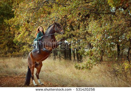 Beautiful young woman riding a horse. The horse stands on hind legs