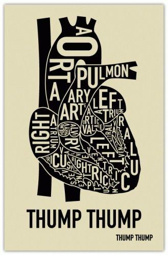 Pin de Kristi Tydlacka en Random things to do | Pinterest | Anatomía ...