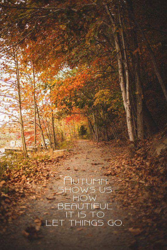 Nature Art Fine Art Print Inspirational Quote Leaves Autumn Photo Orange Fall Decor Woodland October Path Gol Autumn Quotes Season Quotes Leaf Quotes