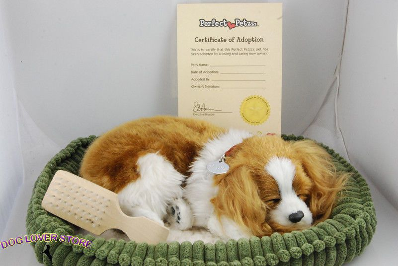 Cavalier King Charles Perfect Petzzz Life Like Breathing Dog