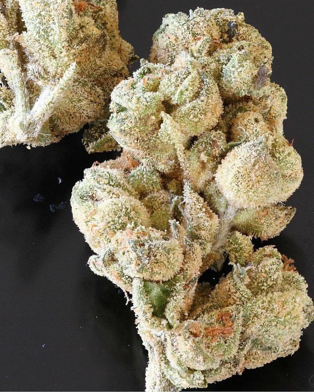 I love weed   Weeding   Weed, Marijuana plants, Buy weed