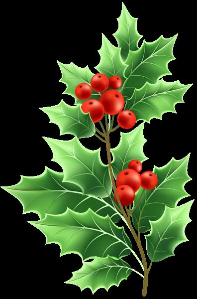 Christmas Mistletoe Transparent Png Clip Art Mistletoe Clipart Clip Art Flower Clipart
