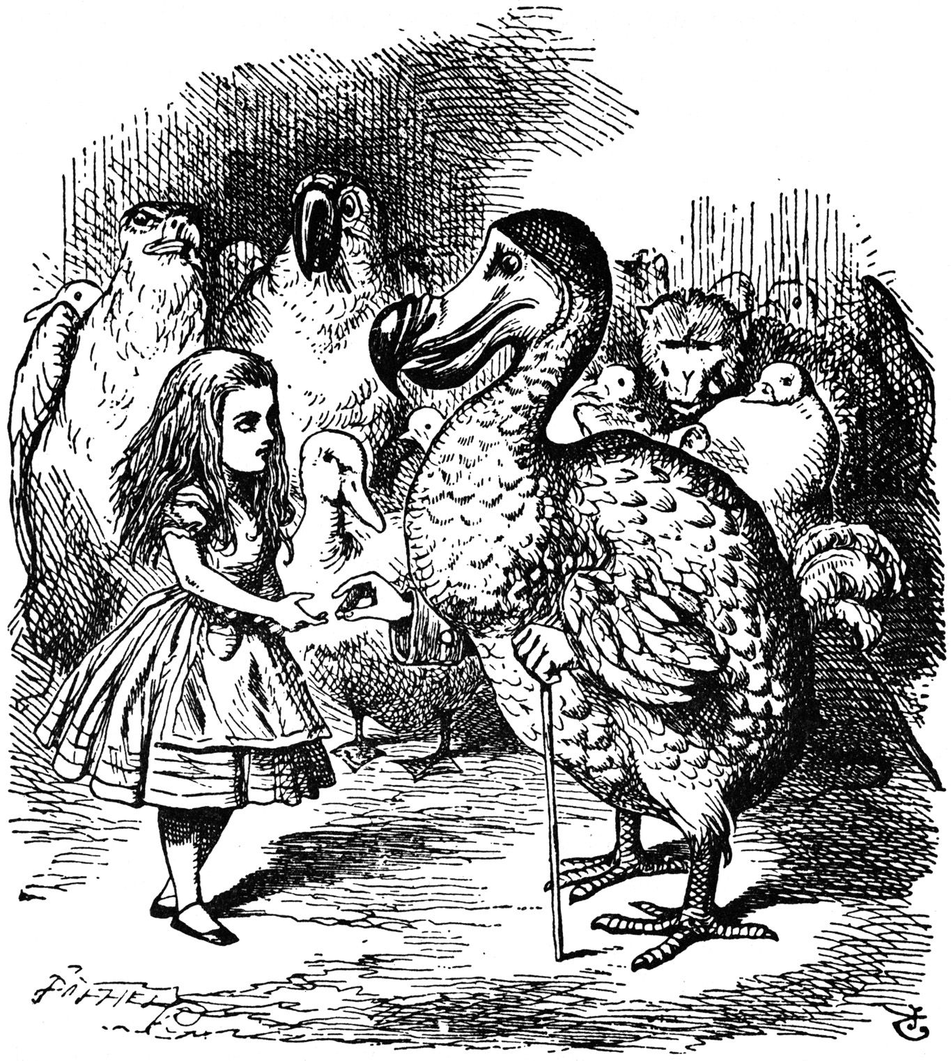 the animals of wonderland tenniel as Tenniel did illustrations of animals, plants and the main character herself for alice in wonderland.