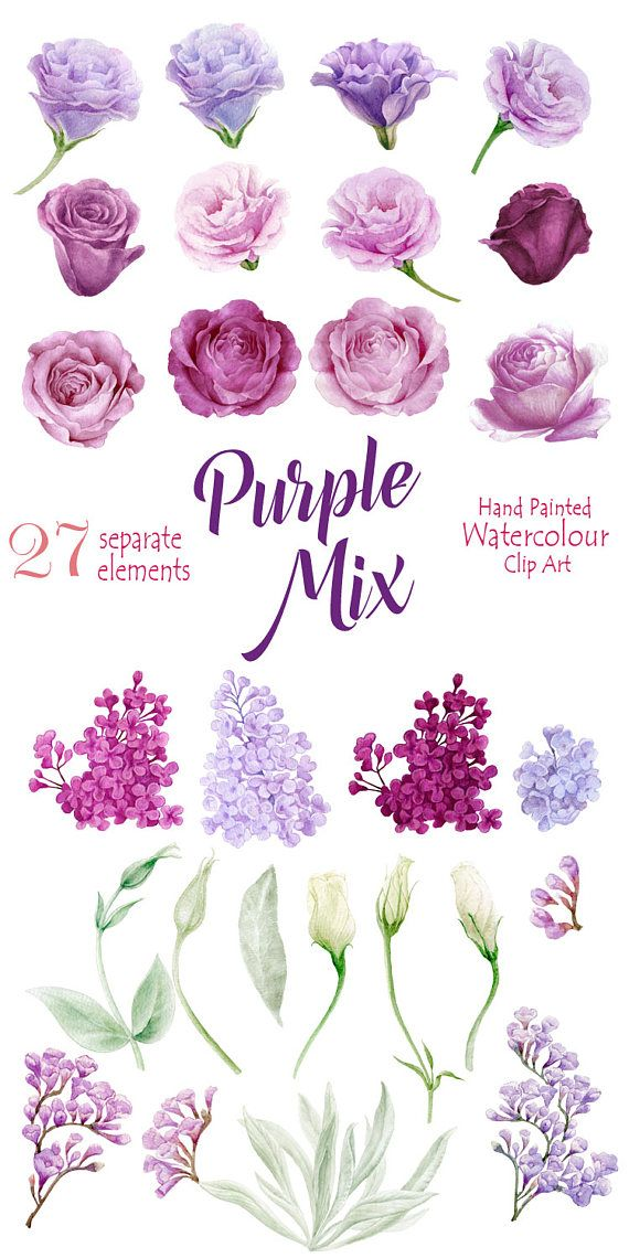 High quality Hand painted Clipart - Flower Watercolor separate elements: Roses, Eustoma (Lisianthus), branch of Lilac and floristic branch and leaves. Romantic floral arrangements for your creativity. Perfect graphic for wedding invitations, greeting cards, photos, posters,