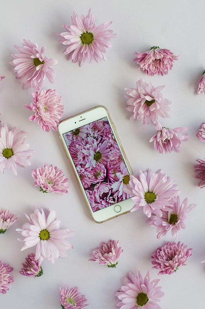 картинки на аву для айфона цветы каким-то причинам