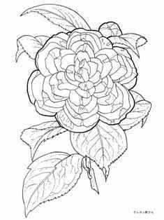 2月3日 2月4日の誕生日の花の椿の塗り絵 塗り絵 秋 花 花