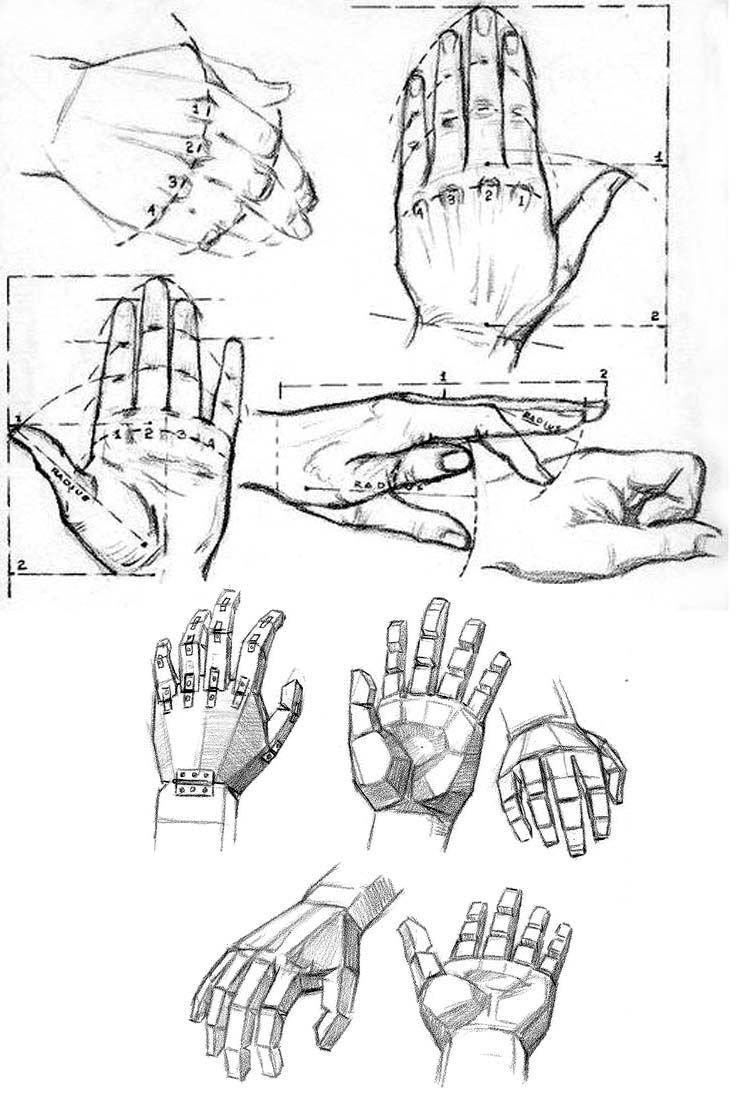 Comment dessiner des doigts main en 2019 dessin - Main en dessin ...