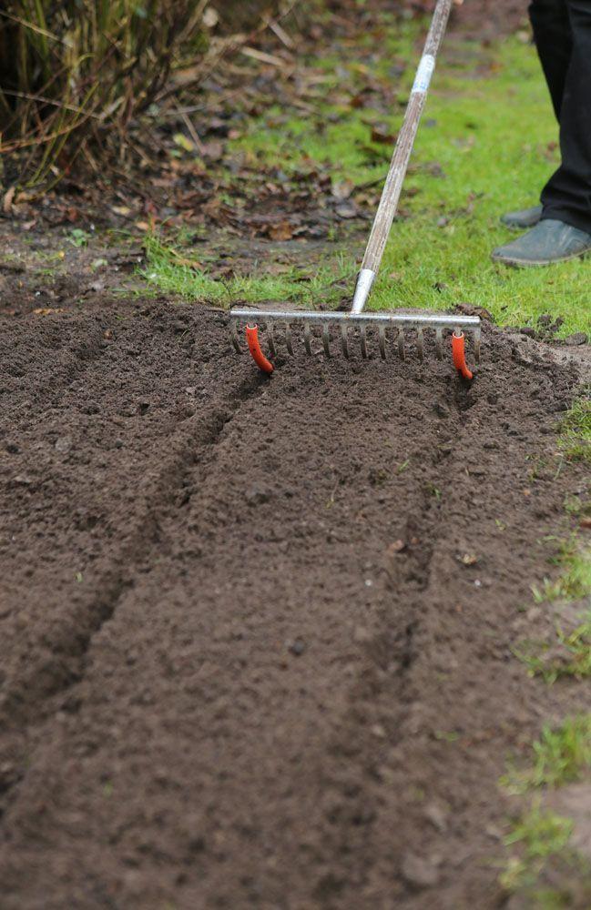 Photo of Newest Snap Shots herb garden beginner Popular #moneyaesthetic Newest Snap Shots…