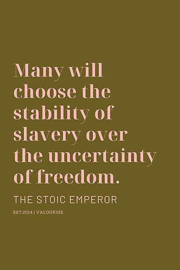 'Many will choose the stability of slavery over the uncertainty of freedom. The Stoic Emperor' Poster by QuotesGalore