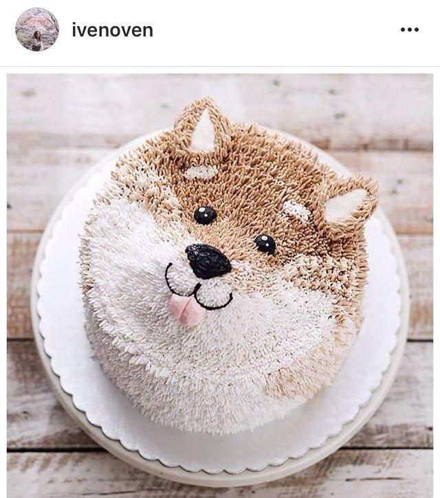 Shiba Inu Doggie Cakes Cake Dog Cakes Cupcake Cakes